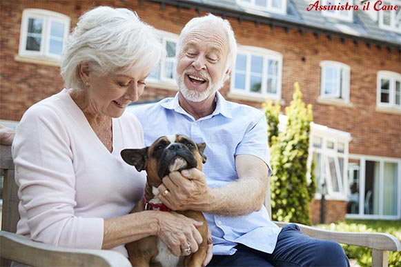 anziani cane assistenza