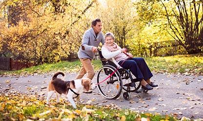 cane disabilita fisica