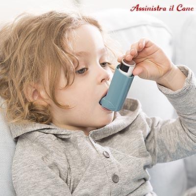 cane malattie croniche asma