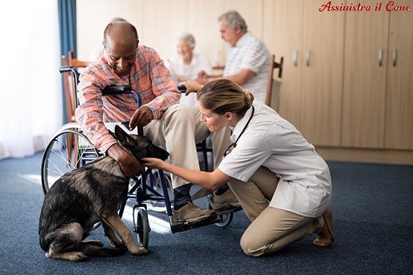 ottiene cane assistenza